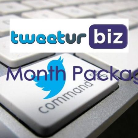 12 Month Twitter Package