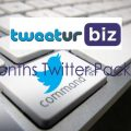 3 Months Twitter Package
