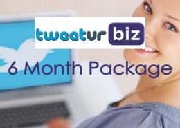 6 month twitter package